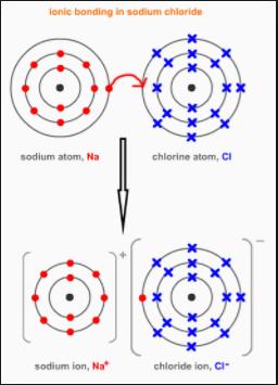 Dot Cross Diagram Of Nacl Wiring Diagram Data Schema