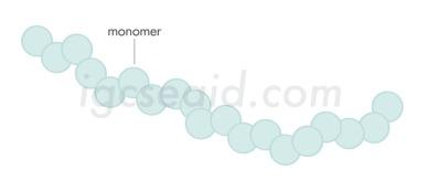polymer diagram