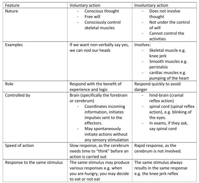voluntary vs involuntary actions table